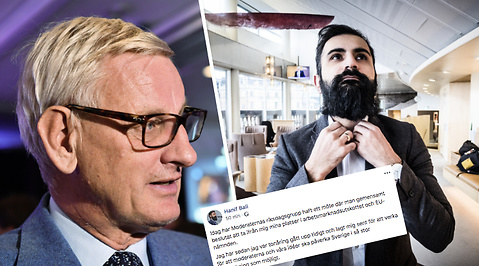Carl Bildt, Moderaterna, Hanif Bali