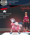 Gymkungen Mr Mime.