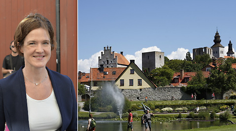 Integration, Jobb, Almedalen, Visby, Moderaterna